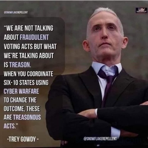 Gowdy voting thoughts